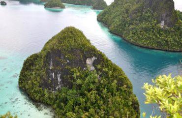 Auri Islands (Cenderawasih Bay), INDONESIA