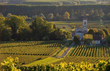 Bordeaux_FRANCE_SauternesLoupiac_VineyardLandscape_ss_217211851_gallery
