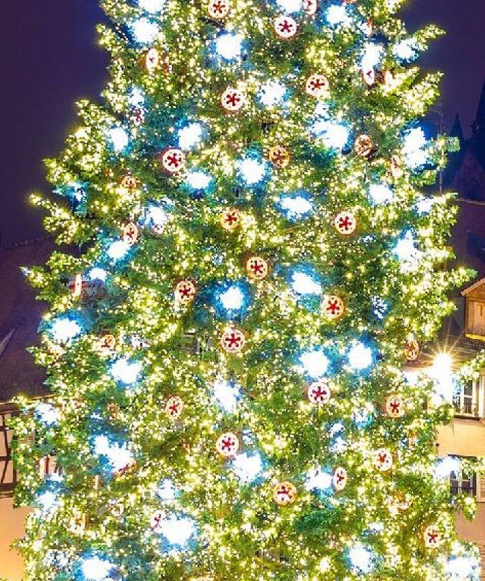 Christmas Markets Rhine_FRANCE_Strasbourg