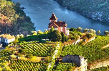 Douro Wine Country - 1425x950