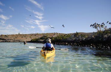 Kayak Baja - 2