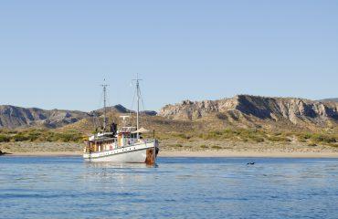Westward Baja 2