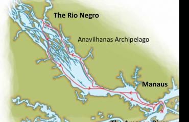 Wild Amazon Map