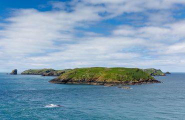 Skomer Island-Wales