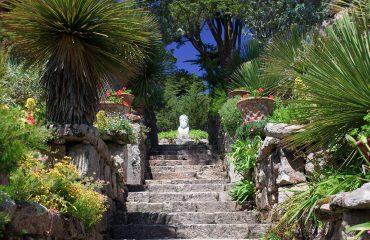 Tresco Abbey Gardens Isles of Scilly-england