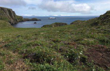unga-island