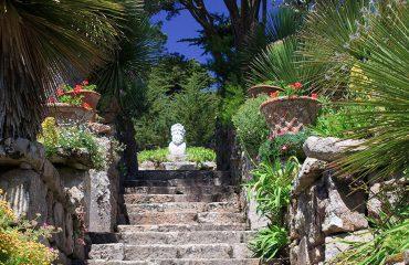 Tresco Abbey Gardens-Isles-of-Scilly-England