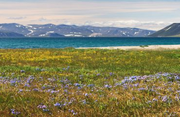 Summer landscape by the sea coast and mountains. Chukotka, Russia.