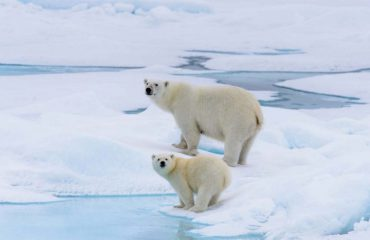 silversea-luxury-cruises-svalbard-nothern-region-norway-3