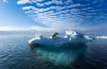 silversea-luxury-cruises-svalbard-nothern-region-norway-bear-iceberg