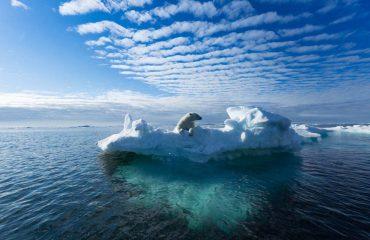 silversea-luxury-cruises-svalbard-nothern-region-norway-bear-iceberg